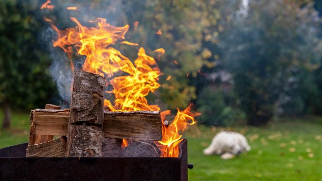 Fire Safety Tips for Dogs and Owners