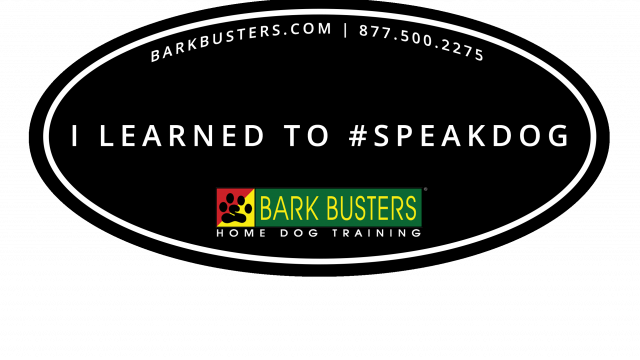 Bark Busters USA relocates U.S. headquarters to Northern California