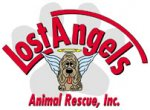 Lost Angels Animal Rescue