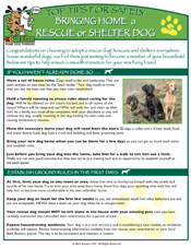 Shelter_Rescue