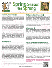 Spring_Tips