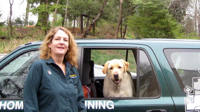Dog Obedience Training Baltimore County Md