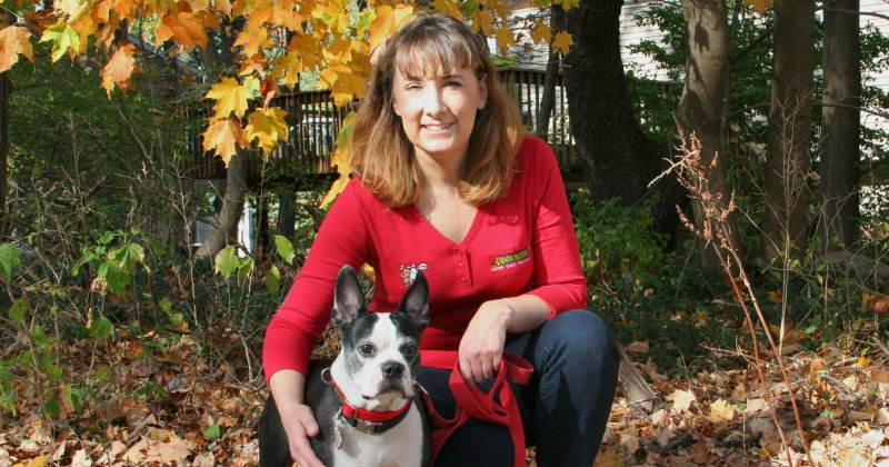 About Bark Busters Home Dog Training In Westchester Ny
